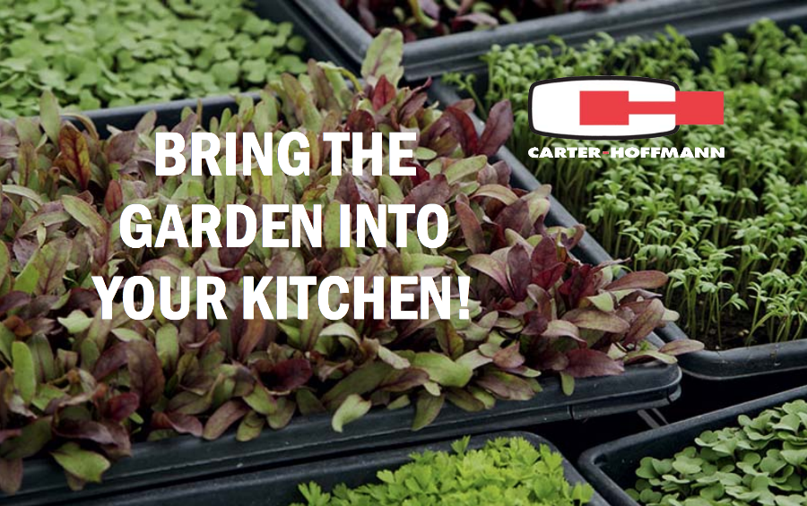 Bring Your Garden Inside Your Restaurant with GardenChef .png